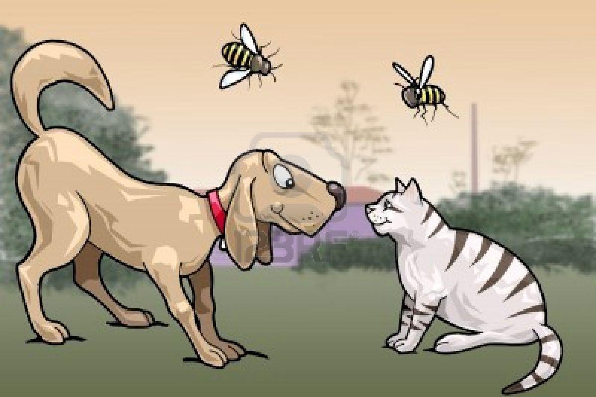 Большинствоукусов насекомых которые